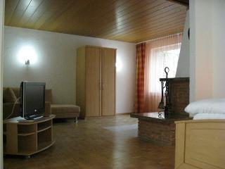 Vacation Apartment in Veitshöchheim - 614 sqft, elegant, central, modern (# 1518) - Veitshochheim vacation rentals