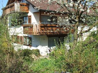 Vacation Apartment in Meersburg - 1076 sqft, friendly, nice, comfortable (# 1723) - Überlingen vacation rentals