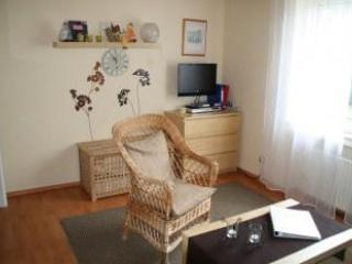 Living Room (1) - Vacation Apartment in Münster - 366 sqft, quiet, good access to public transportation (# 359) - Muenster - rentals