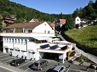 Vacation Apartment in Heidelberg - affordable, quiet single house, beautiful furnishings (# 48) - Heidelberg vacation rentals
