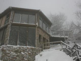 Aspen Ski Loft, 50 Steps From Ski Slope! - Blue Ridge Mountains vacation rentals