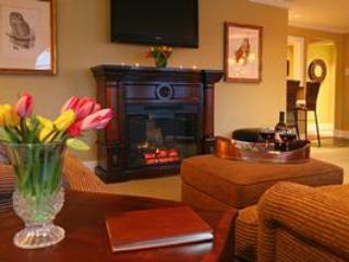 Langley Penthouse - Langley vacation rentals