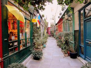 Historic, Quiet Vacation Spot in Paris - Paris vacation rentals