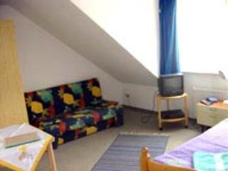 Single Room in Sinzig - 161 sqft, friendly host, beautiful terrace and backyard, wireless internet (#… - Sinzig vacation rentals
