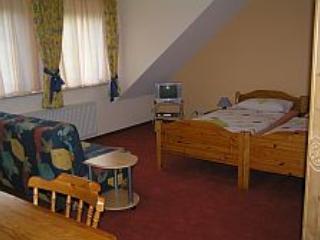 Single Room in Sinzig - 215 sqft, friendly host, beautiful terrace and backyard, wireless internet (#… #1093 - Single Room in Sinzig - 215 sqft, friendly host, beautiful terrace and backyard, wireless internet (#… - Sinzig - rentals