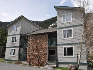 20% Discount: 2/1 - 2/15/2015 for this Convenient Condo in East Vail - Vail vacation rentals