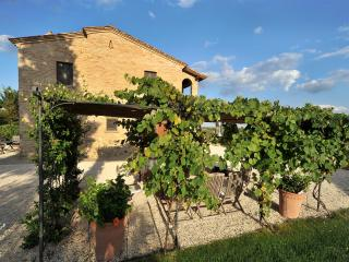 Large Villa in Tuscany for a Group - Casale del Borgo - Foiano Della Chiana vacation rentals