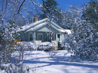 Grey Oak Cottage - Hendersonville vacation rentals