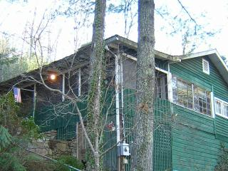 Treehouse Cottage - Hendersonville vacation rentals
