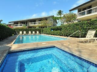 Family Friendly Fun at Napili Beach-Large 3BDR - Lahaina vacation rentals