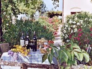 Casa Canarino C - Image 1 - Peccioli - rentals