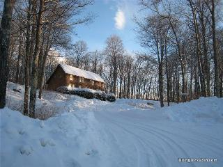 The Cabin at Killington: Left Unit - Killington vacation rentals