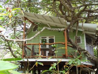 Romantic, Unique 1 BR Tree House- Close to Beach! - Mal Pais vacation rentals