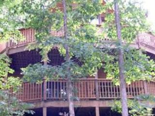 Hideaway Haven - 5 bedroom - log home - Hideaway Haven -5 bedrooms / 3 baths / sleeps 18 - Branson - rentals