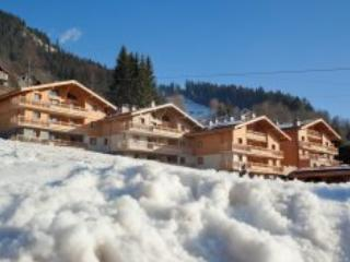 Les Chalets de Jouvence 3P6 - Les Carroz d'Araches LE GRAND MASSIF - Fillinges vacation rentals