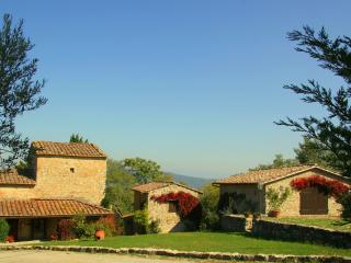 Family-owned farmhouse in Chianti, Tuscany, Ita - Badia a Passignano vacation rentals