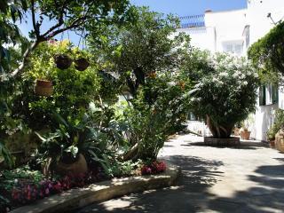 Apartment in Capri with private garden and patio - Casa Cami - Capri vacation rentals