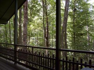 Mountain Cottage with Cascading Waterfall, hot tub - Hendersonville vacation rentals