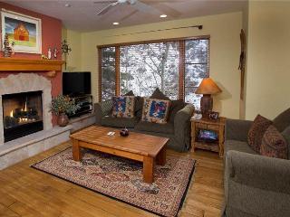 Aspenwood Lodge #201 - Vail vacation rentals