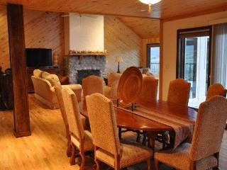 4 BR, Sleeps 8-10. Central to 4 Mountains. Views! - Aspen vacation rentals