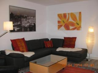 Vacation Apartment in Heidelberg - spacious, good furnishing (# 2219) - Heidelberg vacation rentals