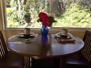 Close to Volcanoes Park - Newly Discounted Rates! - Volcano vacation rentals