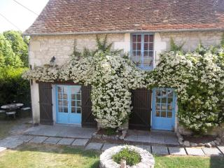 La Lavande 1 bedroom gite in 18th C farmhouse - Ingrandes vacation rentals