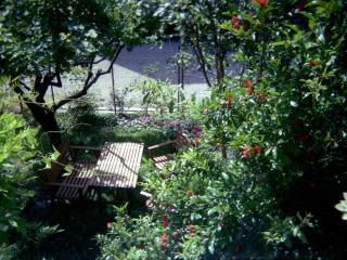 VERDEBLU a charming B&B in the beautiful MANTOVA - Borgoforte vacation rentals