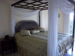 Oceania P114/ 2 bedroom condo w/ Jacuzzi - Palm/Eagle Beach vacation rentals