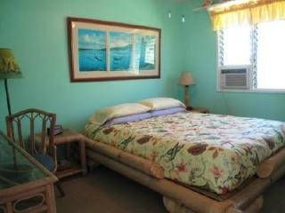 Aloha Lani Inn - 1 Block to the Beach - Lahaina vacation rentals