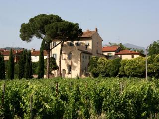Tuscany Villa, Walk to Town - Villa Giovi - 6 - Anghiari vacation rentals