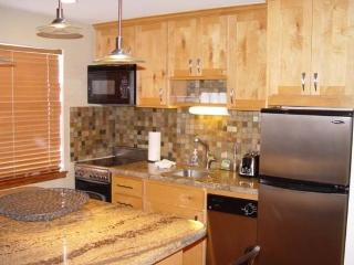 Mountain Village 301-2 Bedroom Ski In/Ski Out Park City Condo - Park City vacation rentals