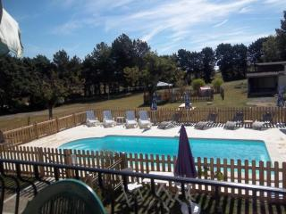 Les Vignes 2 bedroom gite in 18th C farmhouse - Ingrandes vacation rentals