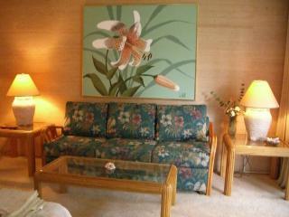 Whaler on Kaanapali  Studio Ground Floor Condo - Ka'anapali vacation rentals