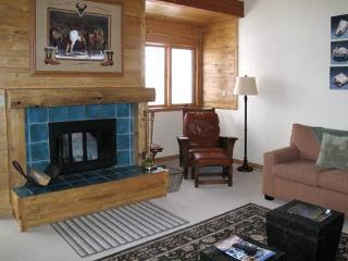 2 bed+loft /2 ba- PHLOX 2521 - Wilson vacation rentals