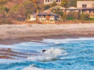 THE POND HOUSE ON STONEWALL BEACH - CHIL JJAF-95GH - Chilmark vacation rentals