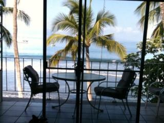 Oceanfront 3rd Floor Patio Views - Lahaina vacation rentals