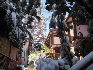 Stylish 2BR Award Winning Condo - Big Bear Lake vacation rentals