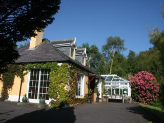Golden Pond Lodge,  Luxury, 5 mins from village. - Killorglin vacation rentals