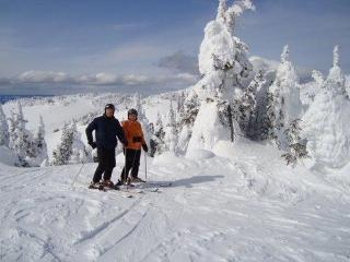 EDELWEISS - Sun Peaks vacation rentals