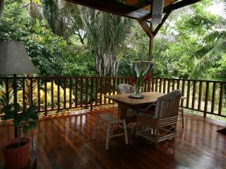 Casa Montezuma - Steps to the Beach, Private, Safe - Montezuma vacation rentals