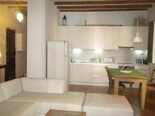 Fabulously furnished spacious apartment in El Born - Catalonia vacation rentals