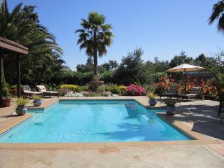 Las Palmas - Sonoma Resort-Like Home - Sonoma vacation rentals