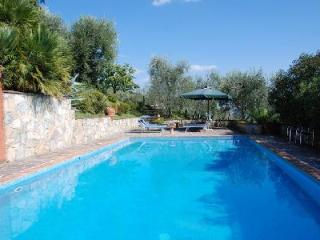 Remarkable Villa Al Palazzaccio, surrounded by olive trees with a private pool - Lucca vacation rentals