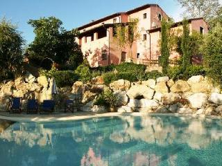 Rustic Le Rondini villa with pool, superb outdoor space, mountain views and close to Montopoli - Pisa vacation rentals