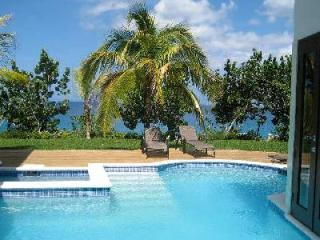 Little Waters on the Cliff - Gardens, Caves, Staff, Private Pool - Negril vacation rentals