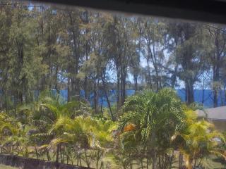 Ocean View PoolJacuzzi 4BR 3Ba 25%OFF Apr&May 2015 - Keaau vacation rentals