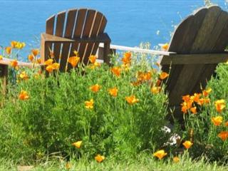 Alegria del Mar,Custom-built International Home with south-facing Ocean Views - Trinidad vacation rentals