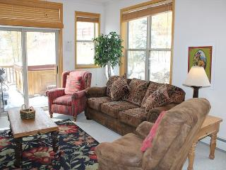 SDR207 Charming Townhouse w/Private Hot Tub, Wifi, Private Laundry - Silverthorne vacation rentals