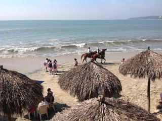 BUCERIAS: FLAMINGOS BEACH/NUEVO VALLARTA - Nuevo Vallarta vacation rentals